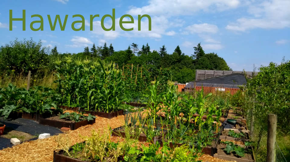 Hawarden site photo