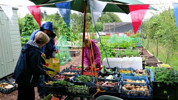 Open day and Hub at the  Community Garden